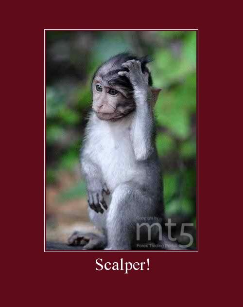 Scalper!