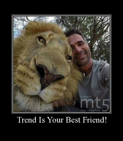 Trend Is Your Best Friend!
