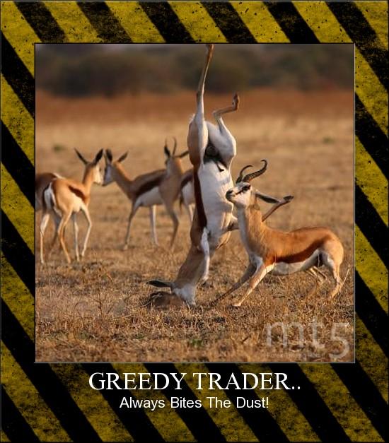 GREEDY TRADER..