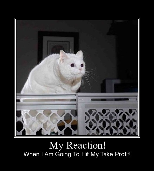My Reaction!