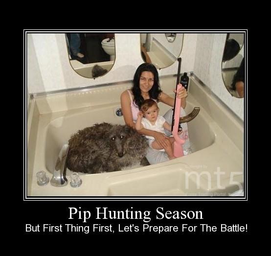 Pip Hunting Season