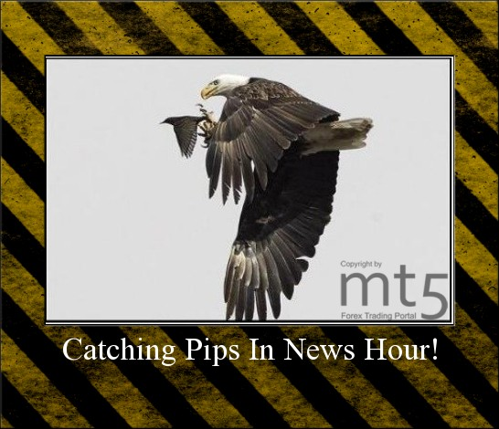 Catching Pips In News Hour!