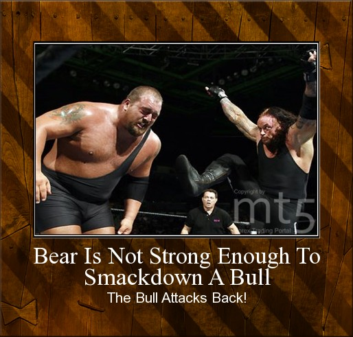 Bear Is Not Strong Enough To Smackdown A Bull