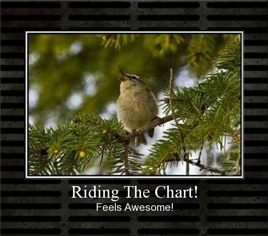 Riding The Chart!