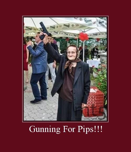 Gunning For Pips!!!
