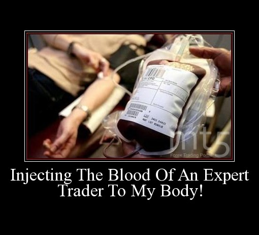 Injecting The Blood Of An Expert Trader To My Body!