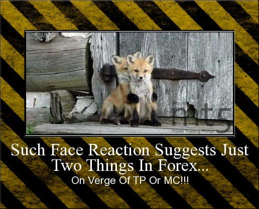 Such Face Reaction Suggests Just Two Things In Forex...