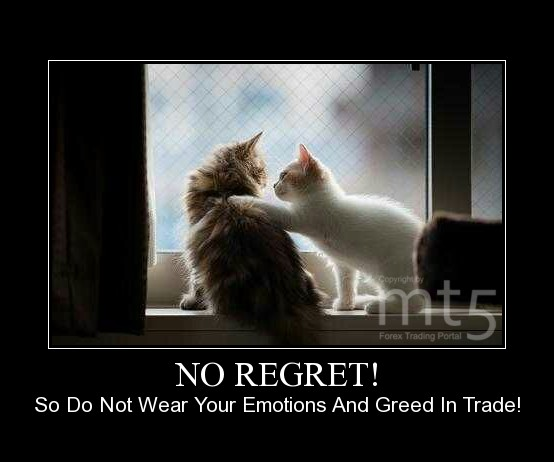 NO REGRET!