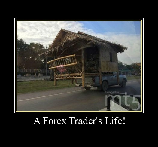 A Forex Trader's Life!