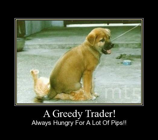 A Greedy Trader!