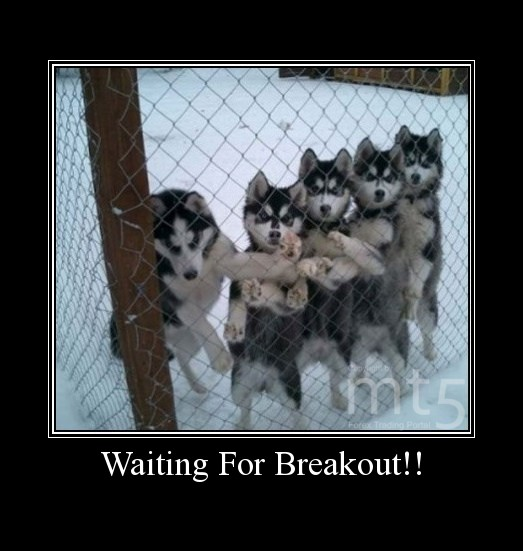 Waiting For Breakout!!