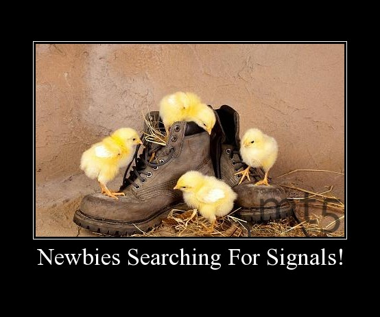 Newbies Searching For Signals!