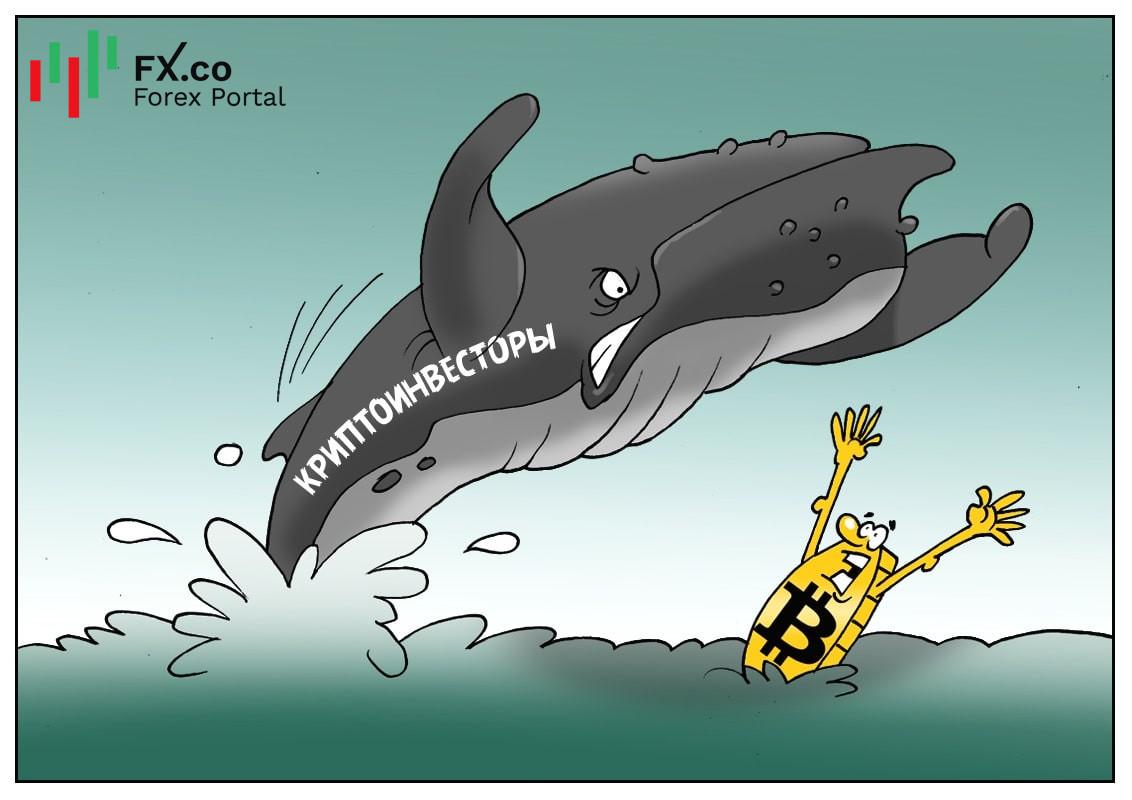 Вот приплывут «крипто-киты», тогда биткоину кранты!