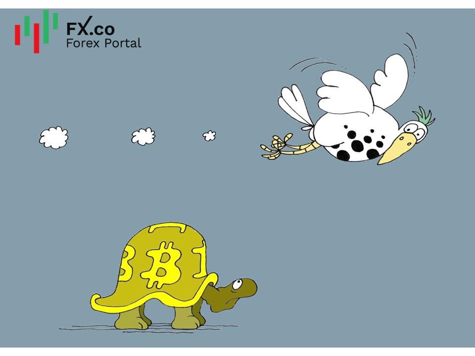Karikatur Humor bersama InstaForex - Page 18 Img6142f99bc3491