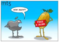 Cơ quan xếp hạng công bố top 10 loại trái cây đắt nhất