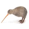 Kiwi, Cable, Aussie, Loonie