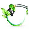 С ветерком на рапсовом масле, или что это за чудо — биотопливо? (1-я часть)