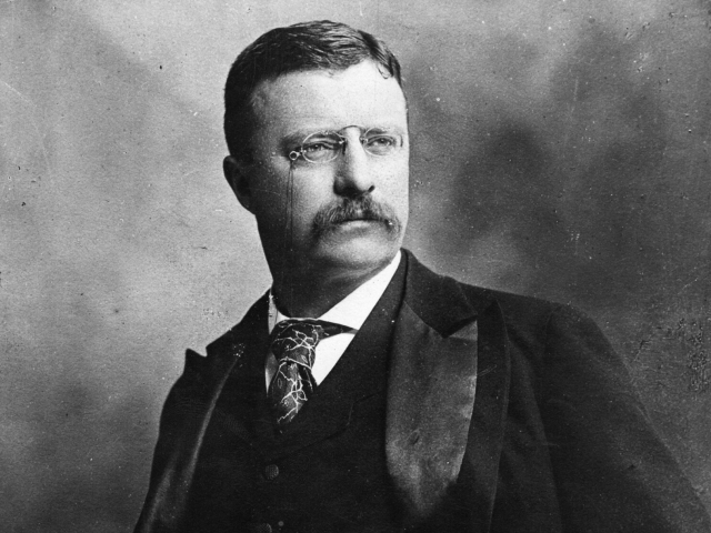 the works of theodore roosevelt as the 26th president of the united states Theodore roosevelt: life lessons from the 26th president of the united states (theodore roosevelt, biography, river of doubt, darkest journey, bully pulpit, journalism book 1.