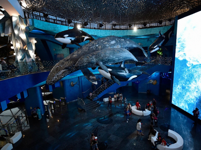... Largest Aquariums In Russia