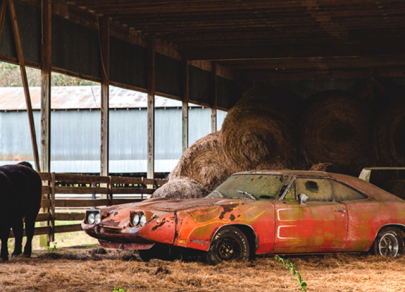Rare cars forgotten in old garages