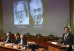 List of Nobel Peace Prize 2018 laureates