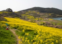 Les plus beaux endroits de la Corée du Sud