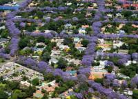 10 bandar raya paling hijau dan paling indah di dunia
