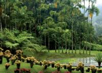 Самые крупные и красивые ботанические сады мира