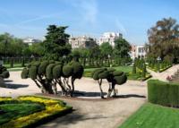 Пять бесплатных масштабных мероприятий в Женеве этим летом