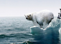 Sept signes de réchauffement climatique