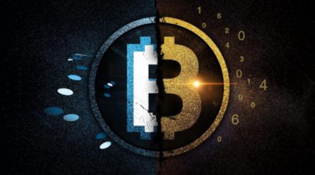 Bitcoin Private: 1-ый хардфорк сразу в 2-х блокчейнах